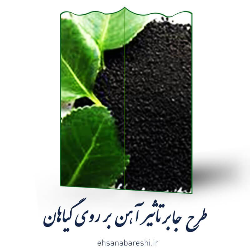 طرح جابر تاثیر آهن بر روی گیاهان