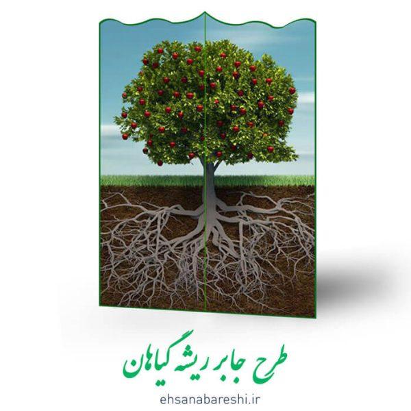 طرح جابر ریشه درخت