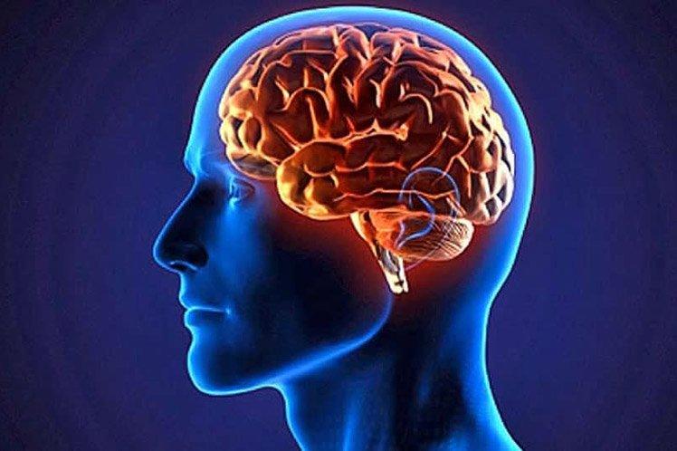 طرح جابر مغز