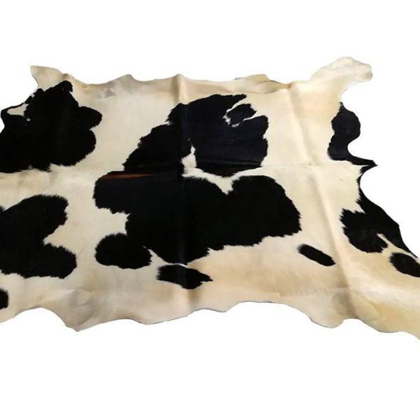 طرح پوشش حیوانات